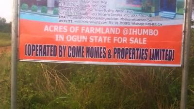 Acres of farmland for Sale at Ihumbo along Idiroko Road, Ogun state